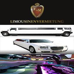 junggesellenabschied stretchlimousine mieten wien polterabend, hummer limousine wien